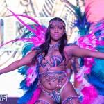 Bermuda Heroes Weekend BHW Band Launch Nova Mas, January 20 2019-5108
