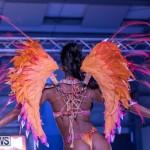 Bermuda Heroes Weekend BHW Band Launch Nova Mas, January 20 2019-5332