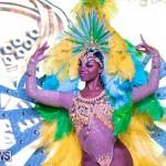 Bermuda Heroes Weekend BHW Band Launch Nova Mas, January 20 2019-5393