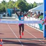 Bermuda Marathon Weekend 10K Bermuda, January 19 2019-0939