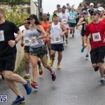 Butterfield & Vallis 5K road race Bermuda, January 27 2019-5899