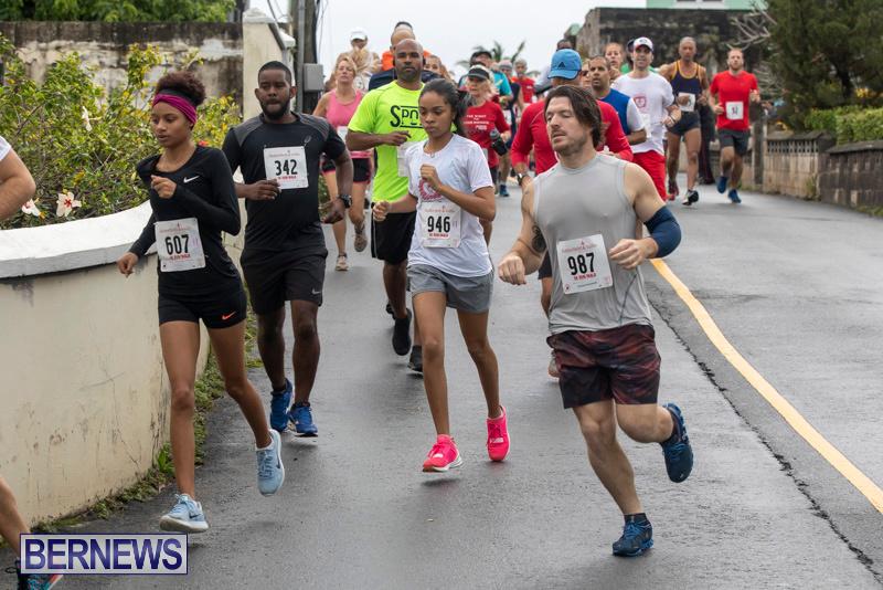 Butterfield-Vallis-5K-road-race-Bermuda-January-27-2019-5939