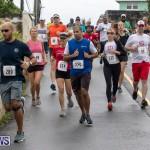 Butterfield & Vallis 5K road race Bermuda, January 27 2019-5945