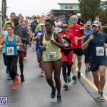 Butterfield & Vallis 5K road race Bermuda, January 27 2019-5961