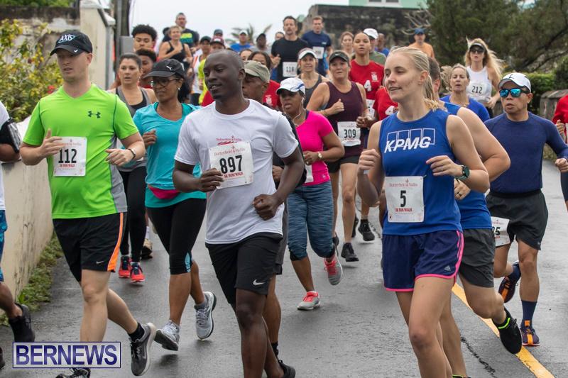 Butterfield-Vallis-5K-road-race-Bermuda-January-27-2019-5986