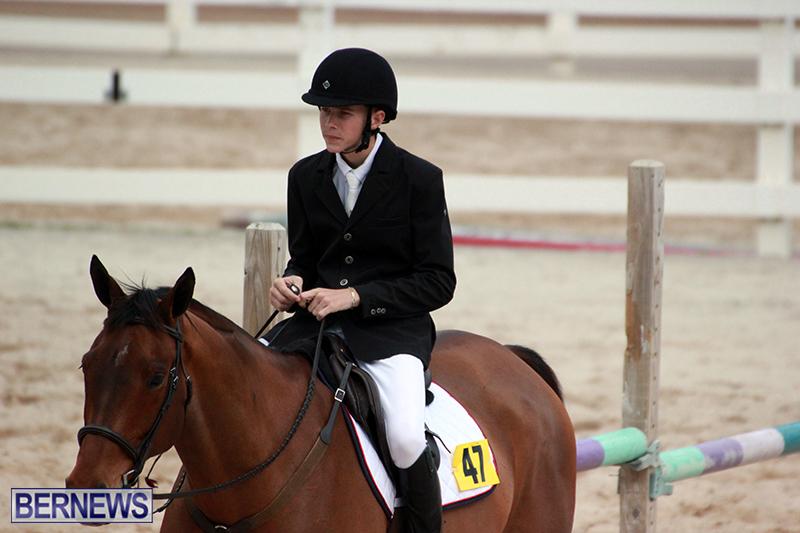 Equestrian-Bermuda-Jan-16-2019-10
