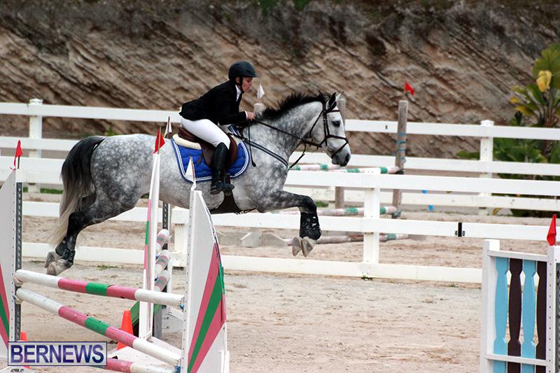 Equestrian-Bermuda-Jan-16-2019-11