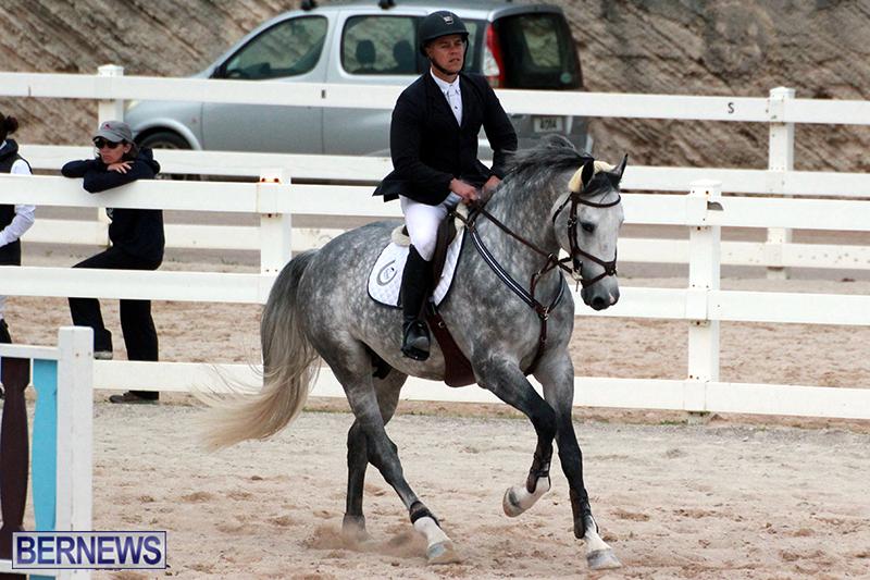 Equestrian-Bermuda-Jan-16-2019-2