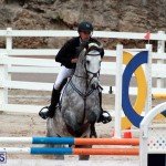 Equestrian Bermuda Jan 16 2019 (3)