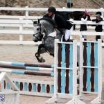 Equestrian Bermuda Jan 16 2019 (7)