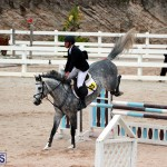 Equestrian Bermuda Jan 16 2019 (8)