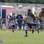 Football at Somerset Cricket Club Bermuda, January 1 2019-6884
