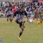 Football at Somerset Cricket Club Bermuda, January 1 2019-6988