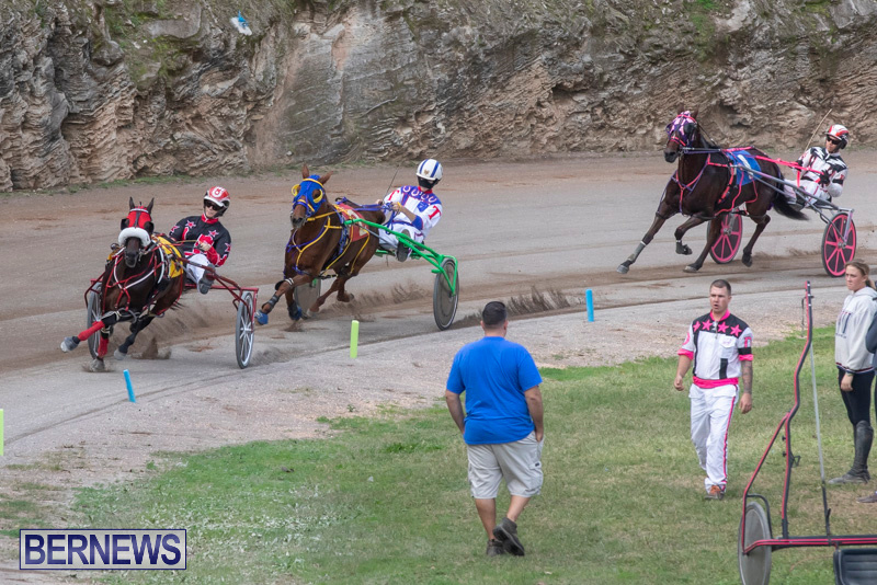 Harness-Pony-Racing-Bermuda-January-1-2019-6602