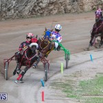 Harness Pony Racing Bermuda, January 1 2019-6603