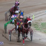 Harness Pony Racing Bermuda, January 1 2019-6604