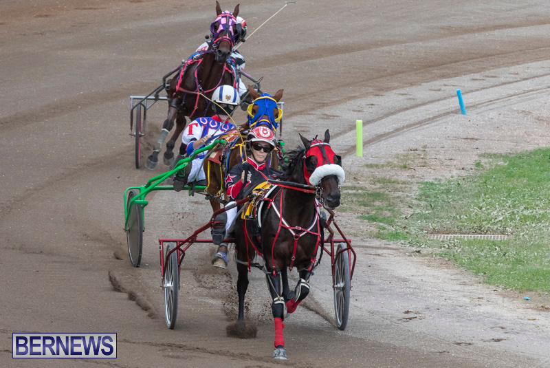 Harness-Pony-Racing-Bermuda-January-1-2019-6604