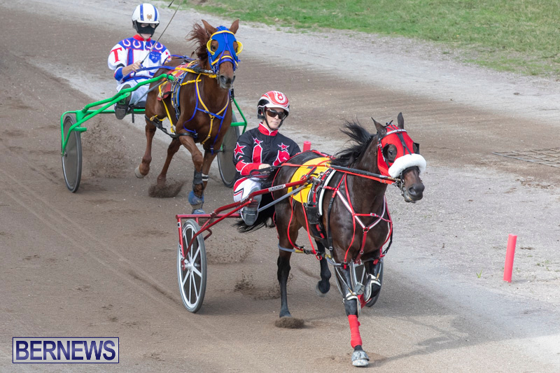 Harness-Pony-Racing-Bermuda-January-1-2019-6606