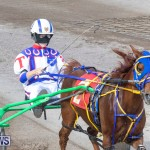 Harness Pony Racing Bermuda, January 1 2019-6608