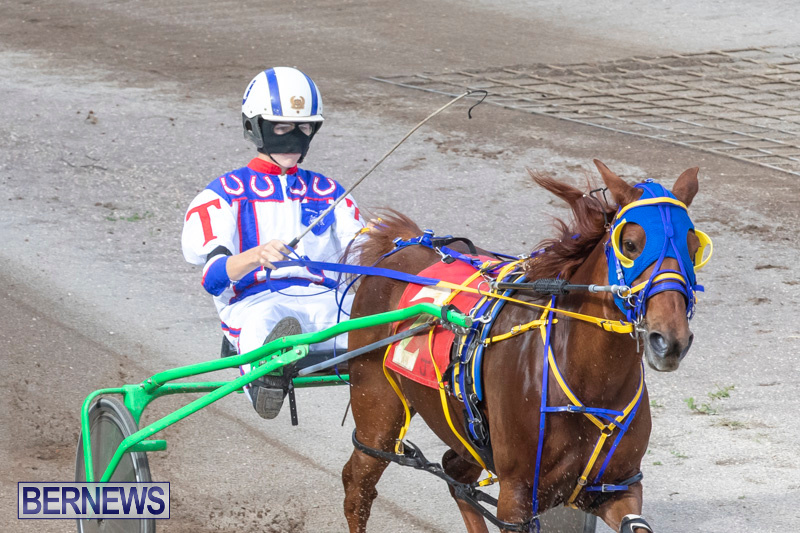 Harness-Pony-Racing-Bermuda-January-1-2019-6608