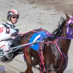 Harness Pony Racing Bermuda, January 1 2019-6610