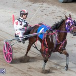 Harness Pony Racing Bermuda, January 1 2019-6611