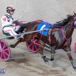 Harness Pony Racing Bermuda, January 1 2019-6612