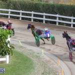 Harness Pony Racing Bermuda, January 1 2019-6613