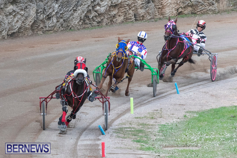 Harness-Pony-Racing-Bermuda-January-1-2019-6616