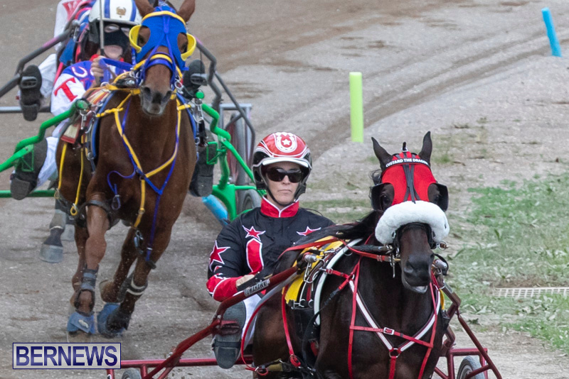 Harness-Pony-Racing-Bermuda-January-1-2019-6619