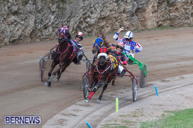 Harness-Pony-Racing-Bermuda-January-1-2019-6631