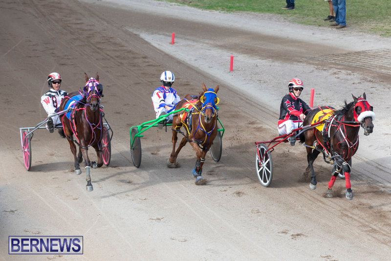 Harness-Pony-Racing-Bermuda-January-1-2019-6640