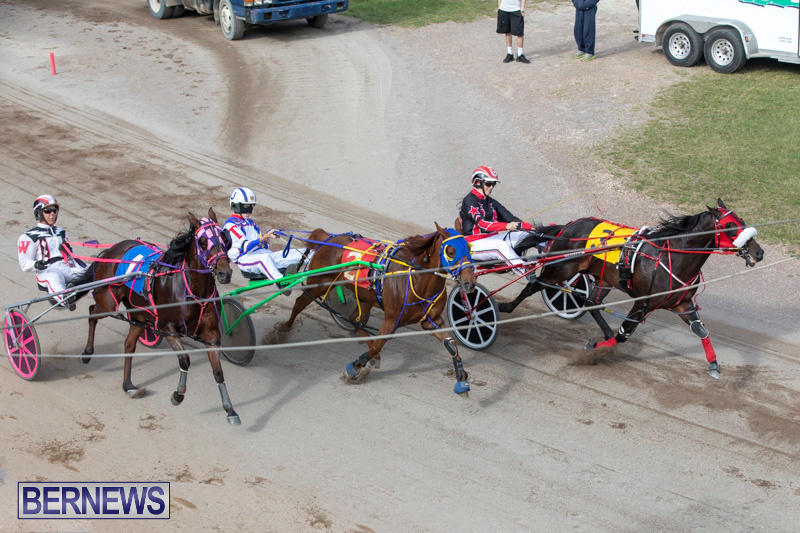 Harness-Pony-Racing-Bermuda-January-1-2019-6645