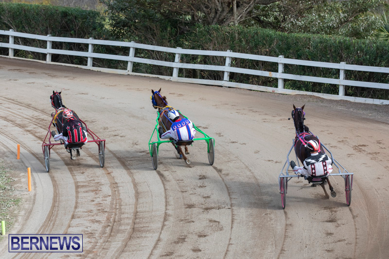 Harness-Pony-Racing-Bermuda-January-1-2019-6647