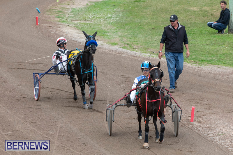 Harness-Pony-Racing-Bermuda-January-1-2019-6669