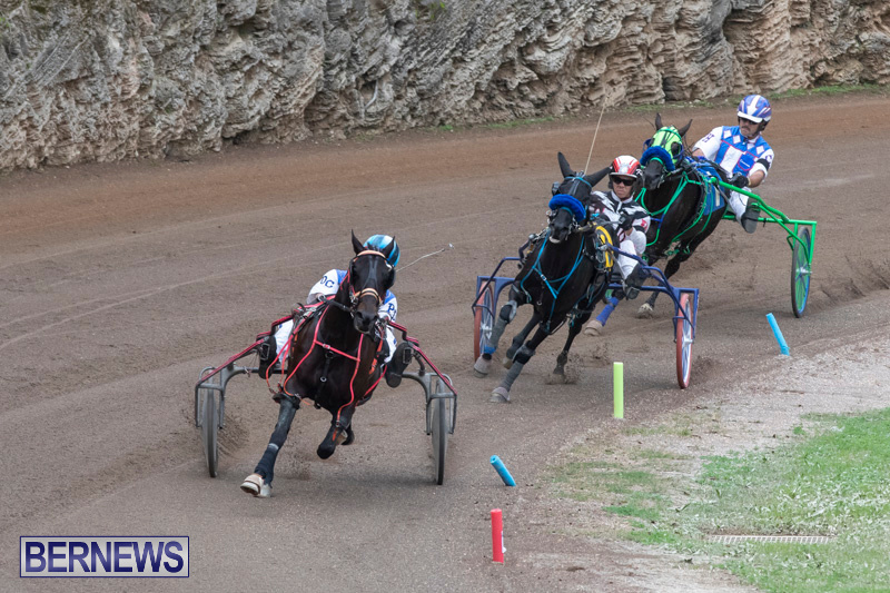 Harness-Pony-Racing-Bermuda-January-1-2019-6694