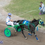 Harness Pony Racing Bermuda, January 1 2019-6708