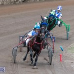 Harness Pony Racing Bermuda, January 1 2019-6718