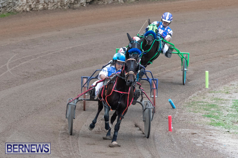 Harness-Pony-Racing-Bermuda-January-1-2019-6718