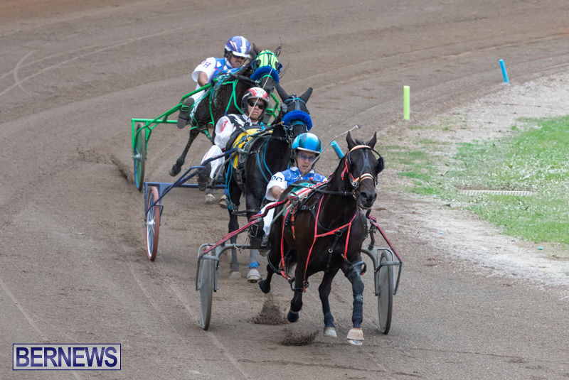 Harness-Pony-Racing-Bermuda-January-1-2019-6719