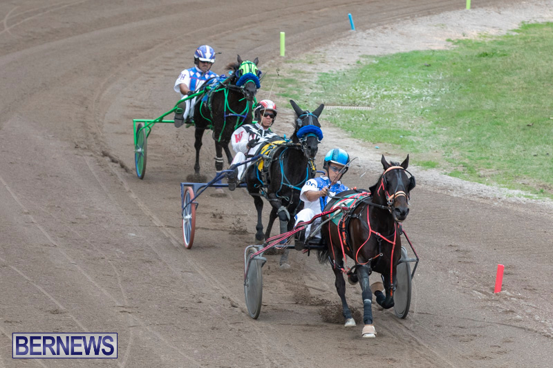 Harness-Pony-Racing-Bermuda-January-1-2019-6721