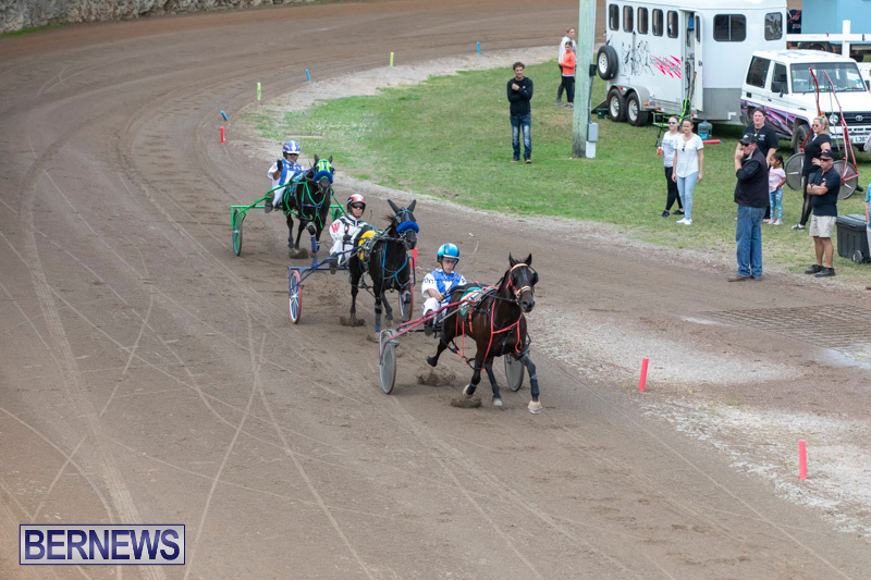 Harness-Pony-Racing-Bermuda-January-1-2019-6723