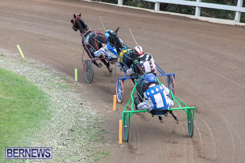 Harness-Pony-Racing-Bermuda-January-1-2019-6731
