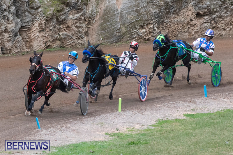 Harness-Pony-Racing-Bermuda-January-1-2019-6737