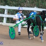 Harness Pony Racing Bermuda, January 1 2019-6773