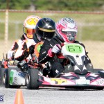 Karting Bermuda Jan 23 2019 (12)