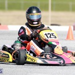 Karting Bermuda Jan 23 2019 (6)