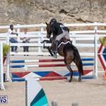 RES Hunter Jumper Show Series 1 Bermuda, January 20 2019-3630