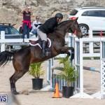 RES Hunter Jumper Show Series 1 Bermuda, January 20 2019-3635