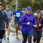 31st Annual PALS Family Fun Walk Run Bermuda, February 24 2019-0062